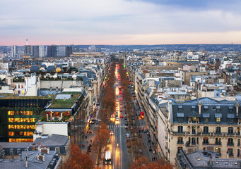 View from the Triumphe arc in Paris.