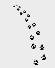 Black trail of dog, turn left, vector