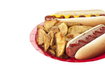hotdog sandwiches and potato fries in a plate