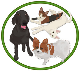 大型犬と小型犬と猫
