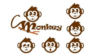 Monkey expression variation