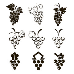 Set of 9 icons grapes