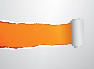 Orange torn roll paper