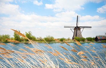 Water arrogation windmill view in Holland Fototapete