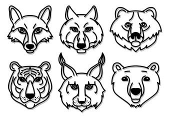 wild animals head predators