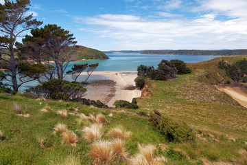 View of Native Island from Stewart Island, Wohlers monument look