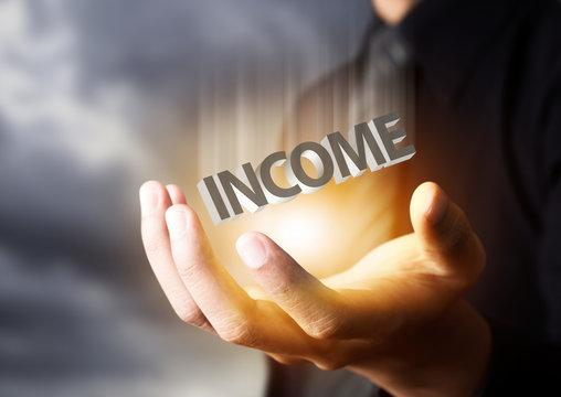 Businessman showing text income concept