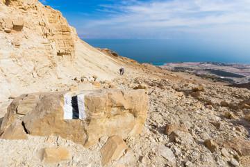 Wall Mural - Couple walking desert trail down to Dead sea.