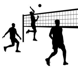 volleyball 9