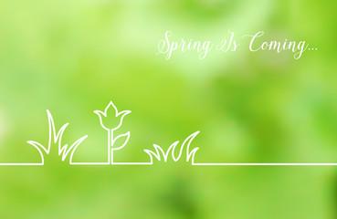 Floral line design.