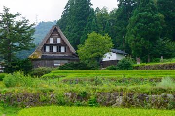 Historic Village of Gokayama in summer, Ainokura Gassho-zukuri v
