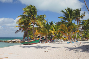 Sandy beach on sea coast. Isla Saona, La Romana, Dominicana