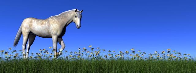 White horse - 3D render