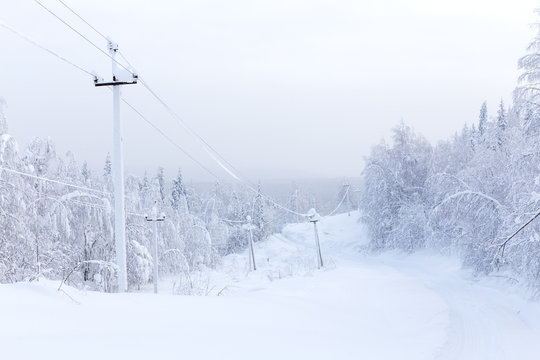 Power line in the winter forest