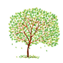 葉 木 新緑