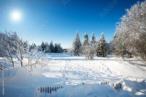 paysage d 39 hiver photo libre de droits sur la banque d 39 images image 78305620. Black Bedroom Furniture Sets. Home Design Ideas