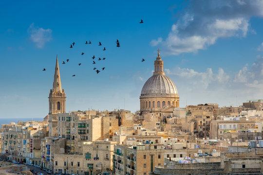 Valetta city buildings with birds flying
