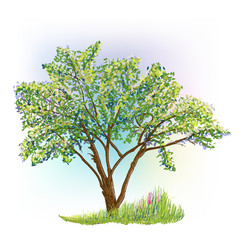 tree and grass with flowers drawing
