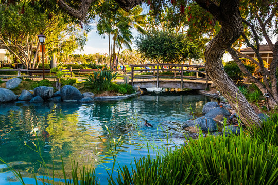 Pond at the Seaport Village, in San Diego, California.