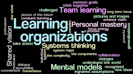 Learning organizations 08
