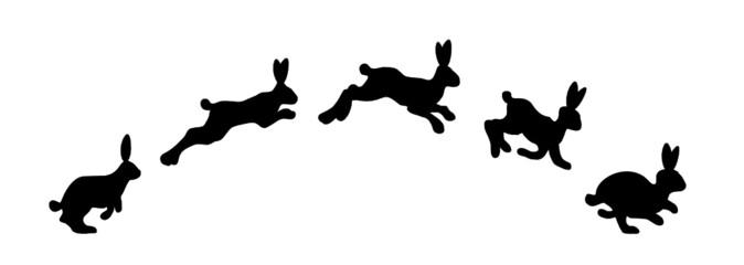 Springende Hasen