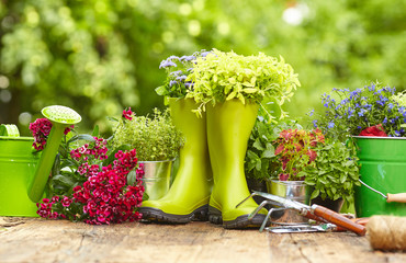 Photo sur Toile Jardin Outdoor gardening tools on old wood table
