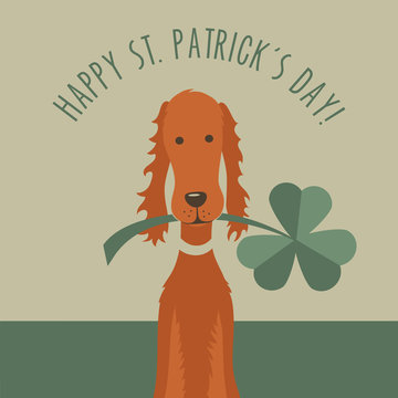 Happy St. Patricks Day funny Irish setter