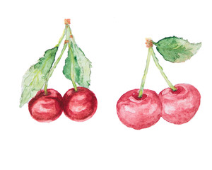 the cherry watercolor isolated on the white background