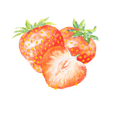 the strawberry watercolor isolated on the white background