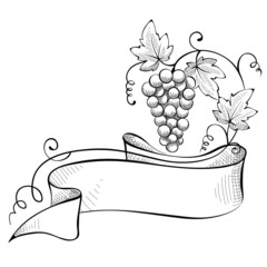 Vector illustration, design element -- grape with ribbon