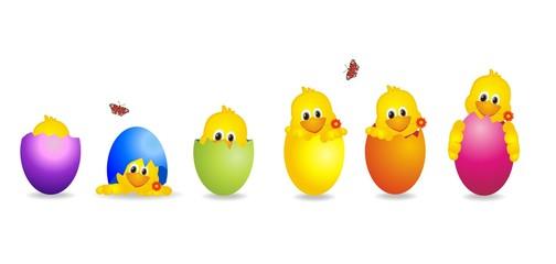 witzige Küken im Ei