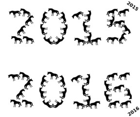 the year 2015 and 2016 version horses