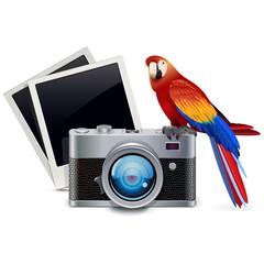Vector Photography Concept