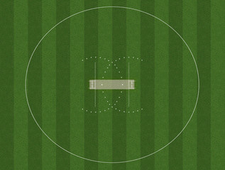 Cricket Pitch And Field