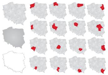 Fototapeta podział administracyjny polski, województwa w polsce obraz