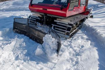 gatto delle nevi 2
