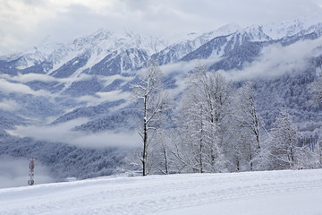 Beautiful snow-capped peaks of the Caucasus Mountains.