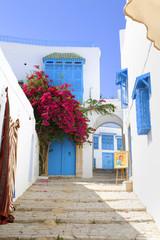 Ein Gebäude in Tunesien in der Stadt Sidi Bou Said