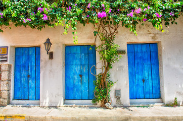 Doors of Cartagena
