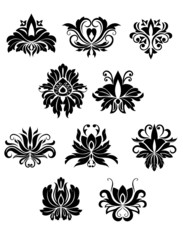 Floral design elements and flowers