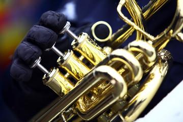 Winter horn