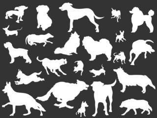 white dogs silhouettes set