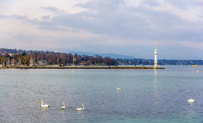 View of the Lighthouse in Geneva - Switzerland