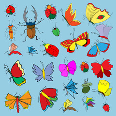 Set of butterflies and bugs. Insects. Vector illustration.