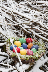 Colored eggs in a basket in snow