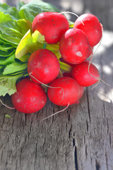 Radishes on rustic background