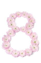 pink flowers in  shape of number eight on white background