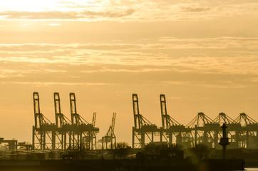 Blick bei Sonnenuntergang  auf Elbe Terminalhafen und Kräne