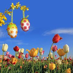 Fototapete - Hintergrund Ostern mit Tulpen und Ostereiern