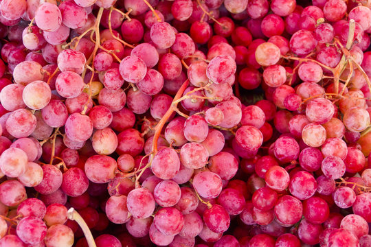 purple grapes close up